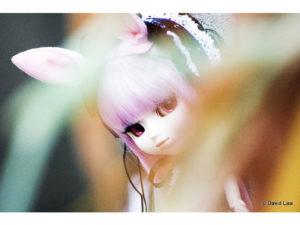Aby-II-Dolls