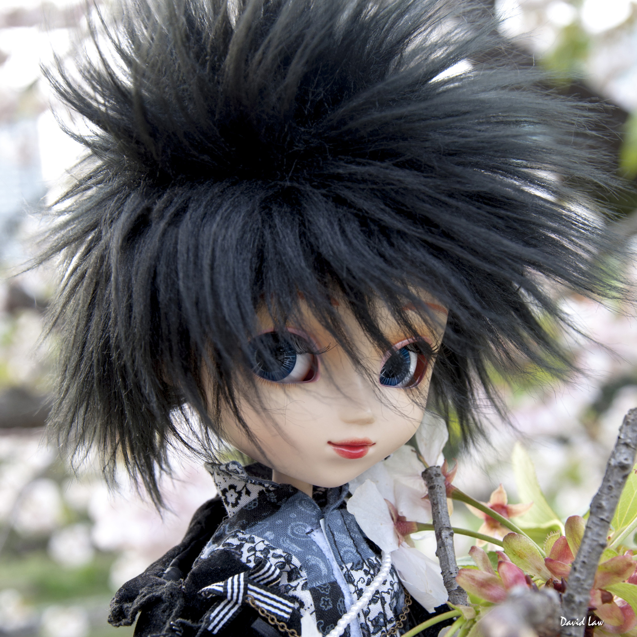 Cherry Blossom II Doll Squar copie