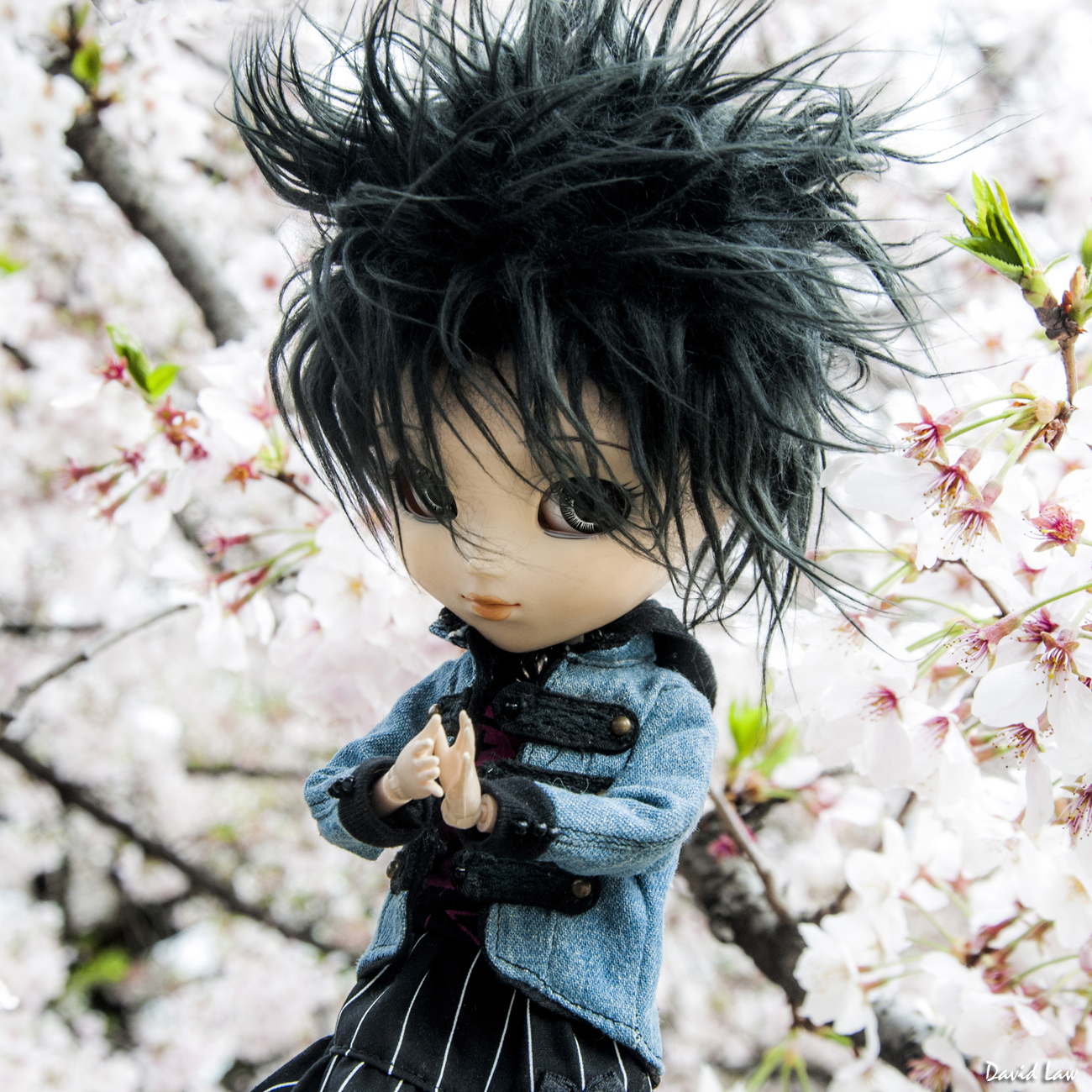 Cherry Blossoms Doll Squa copie