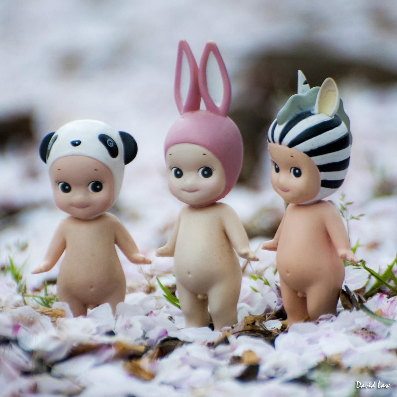 Cherry Blossoms II Angels copie