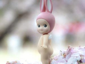 Rabbit on Cherry Blossoms copie