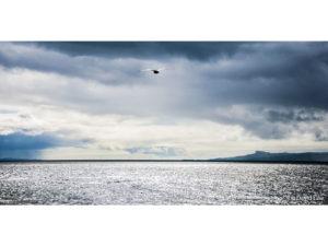 Bird on Sea 40X80