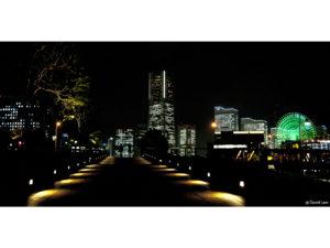 Tokyo 2 40X80