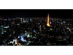 Tokyo 22 40X80 copie