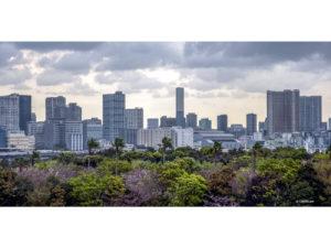 Tokyo 32 40X80_1 copie