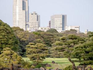 Tokyo 49
