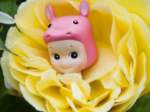 Hyppo Flower 30X30 copie