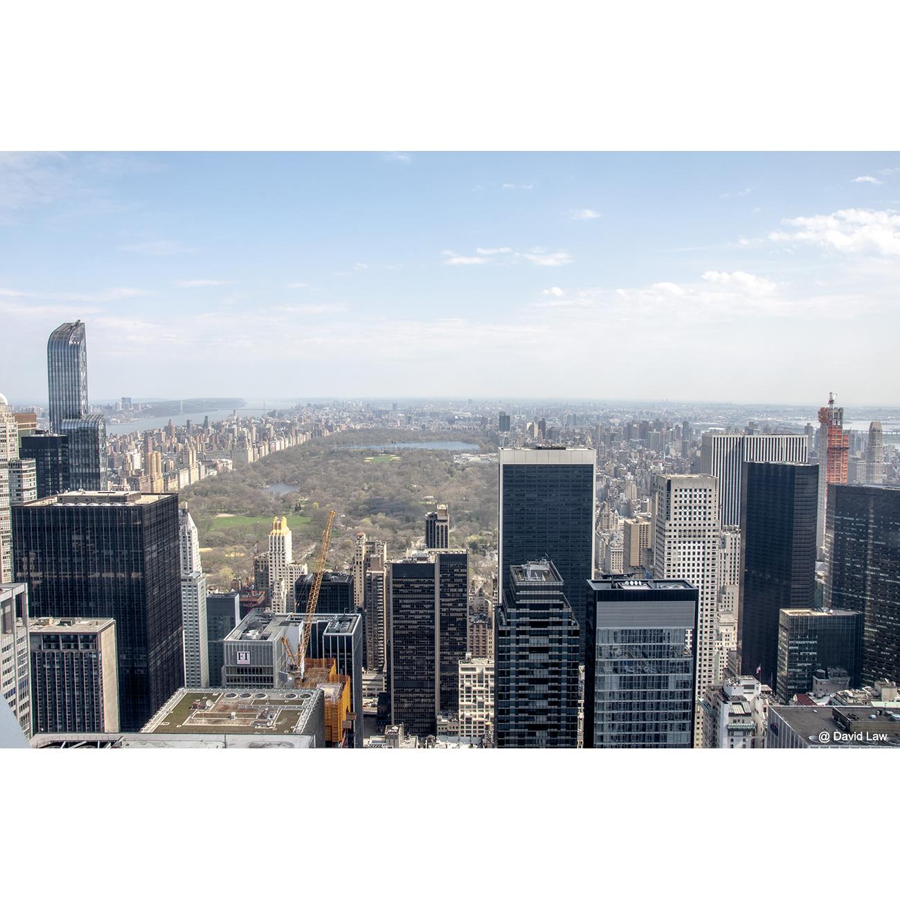 New York 40
