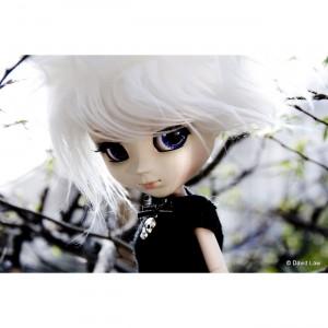Asuza III 20X30 Dolls