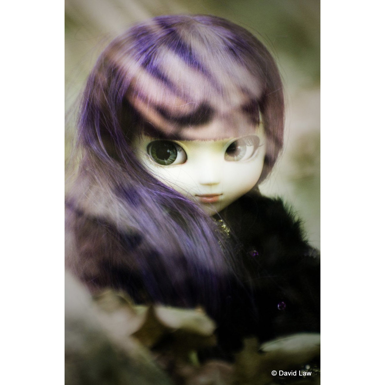 Lunatik IV Dolls