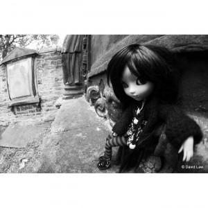 Rock n Doll nb Dolls