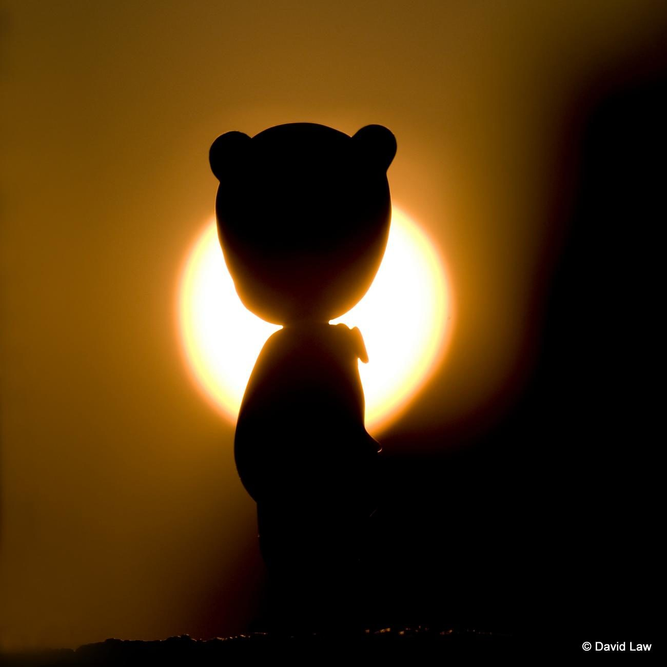 Sunset AngelsSquare