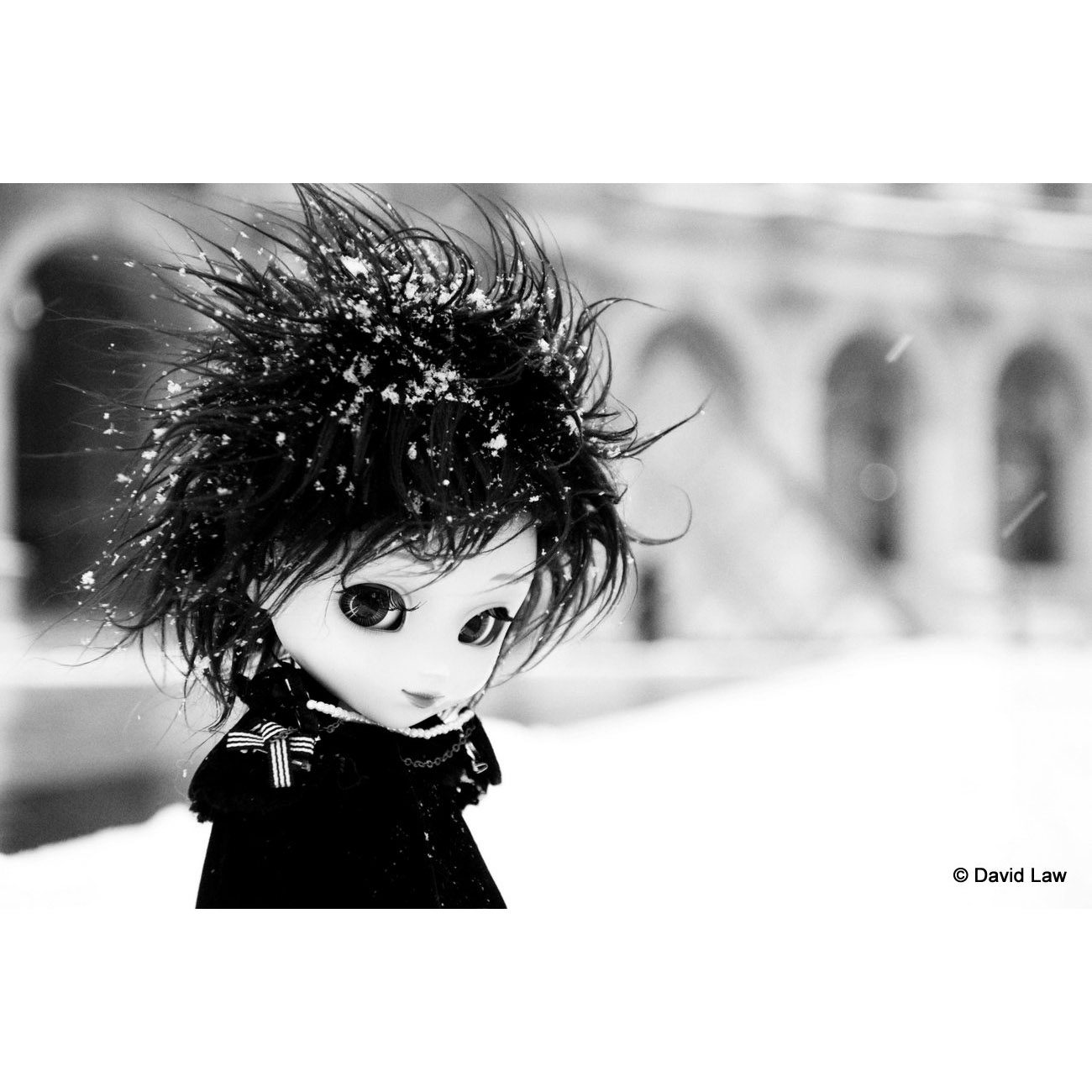Tomoyo Neige NB Dolls