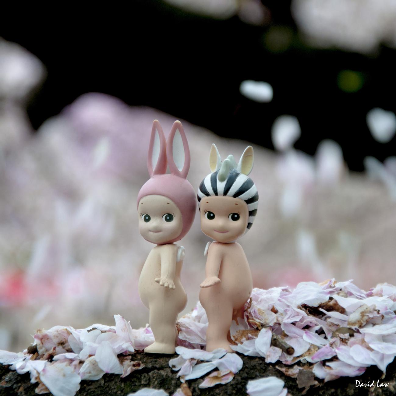 Cherry Blossoms Angels sq copie