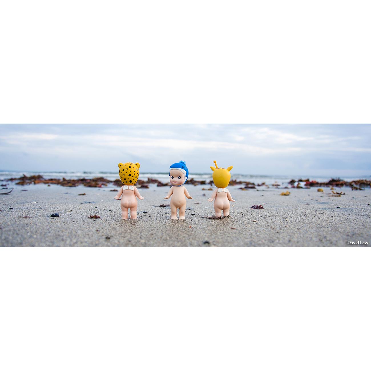 Kamakura Beach Frise 30x90 copie