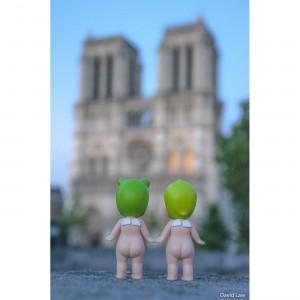 Notre Dame copie