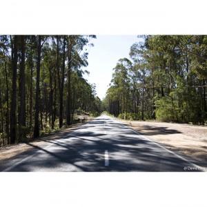 A Road copie