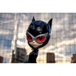Catwoman Sunset 20x30 copie 2
