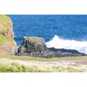 Ocean Paysage II copie