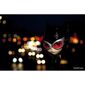Dolls - Serie Catwoman