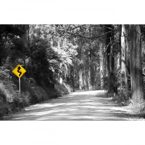 Road Panneau nb copie