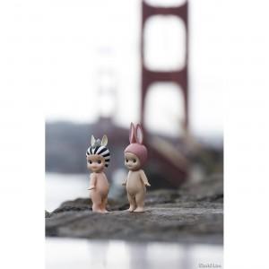 San Francisco 20x30