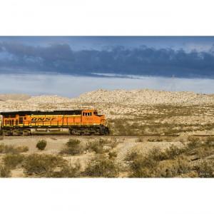 The Train 40x60