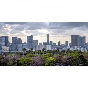 Tokyo 32 40X80 1 copie