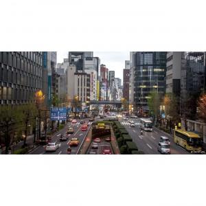 Tokyo 33 40X80 copie