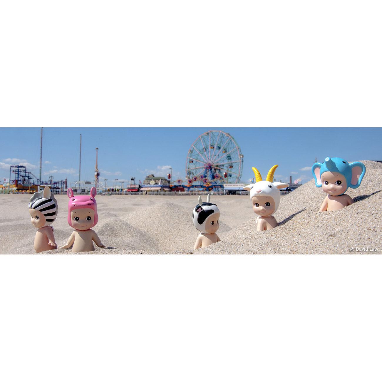 Coney Island Beach 30x90