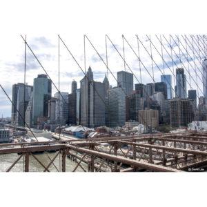 New York 48
