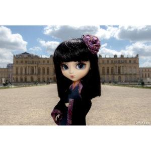 Versailles 20x30 copie
