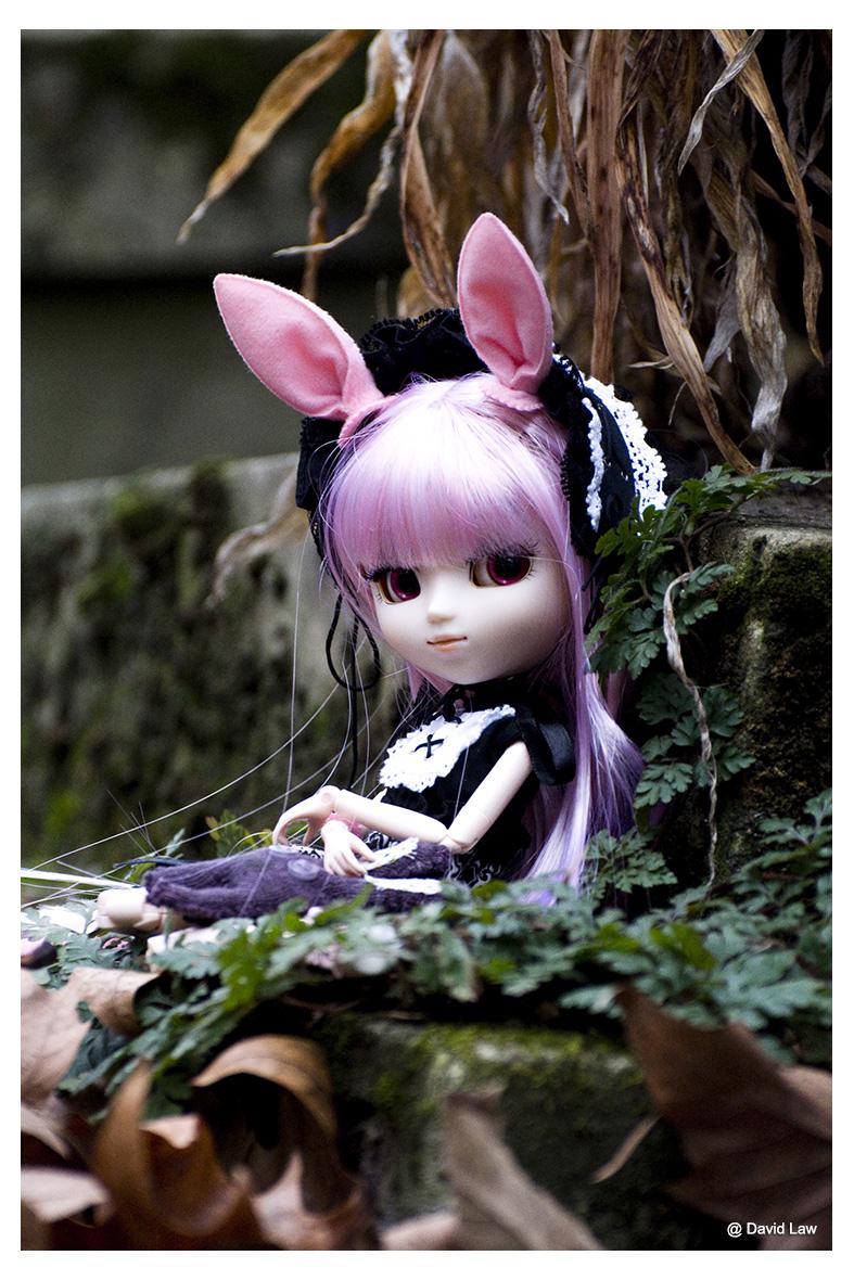 Aby Doll II ldv s0220