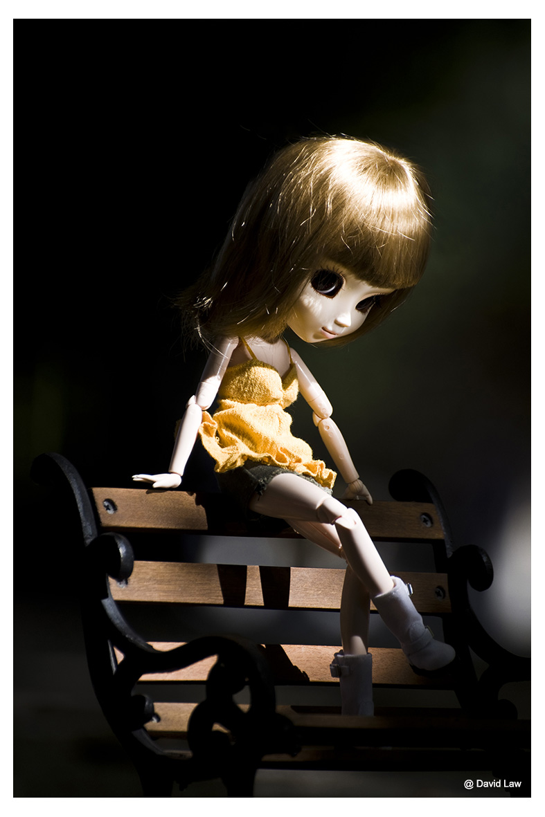 Bonnie ldv s0220
