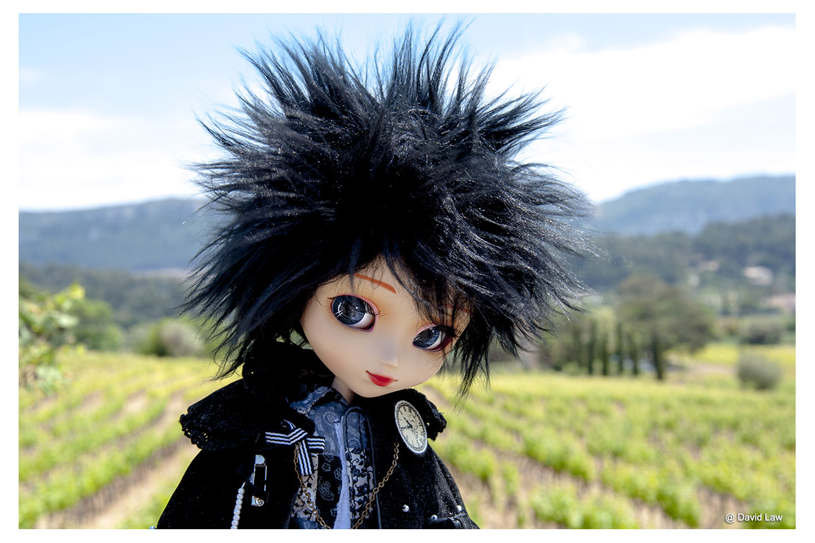 Cassis Countryside II Doll ldh s0220