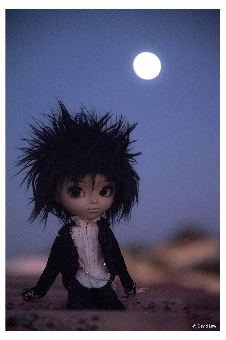 Full Moon ldv s0220