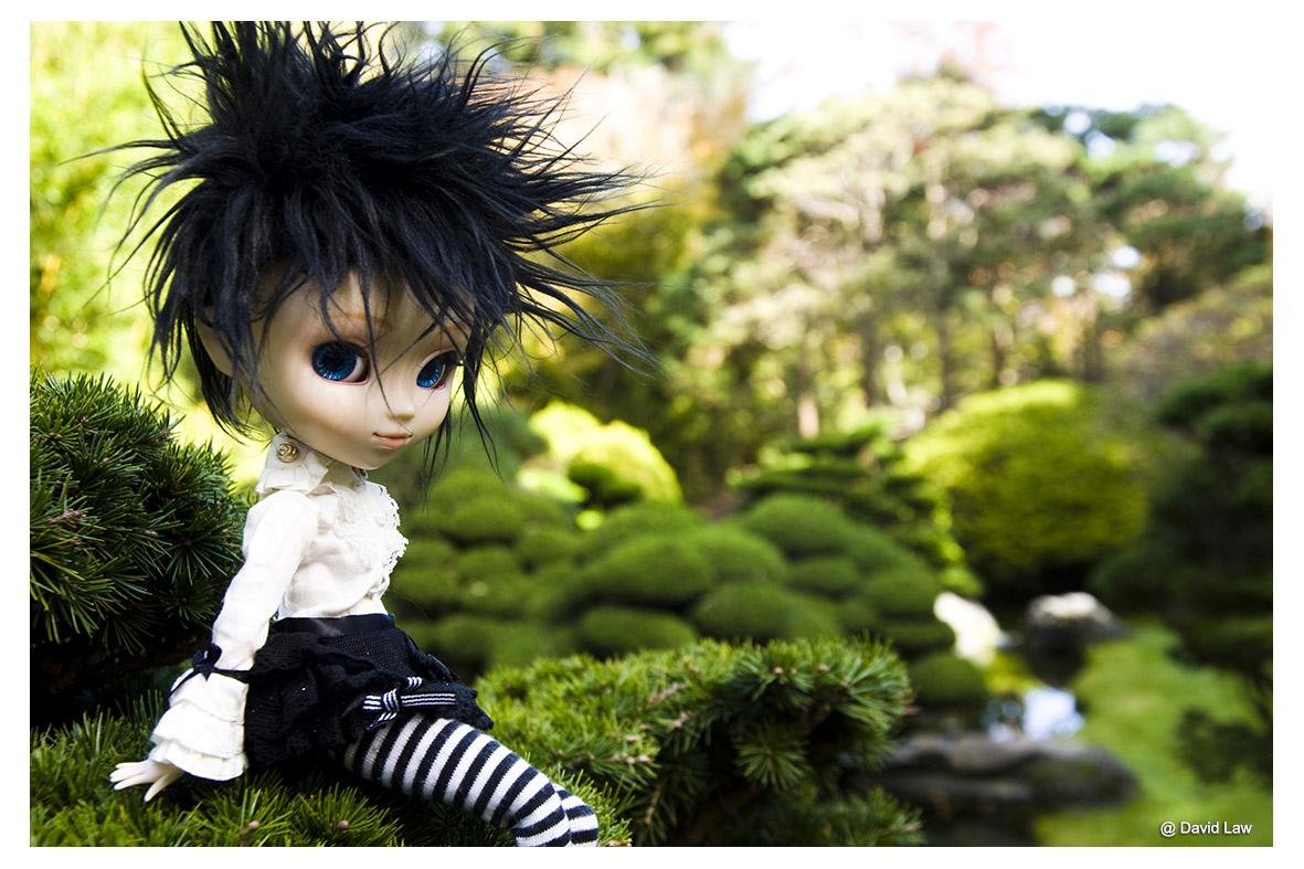 Japanese Garden ldh s0220