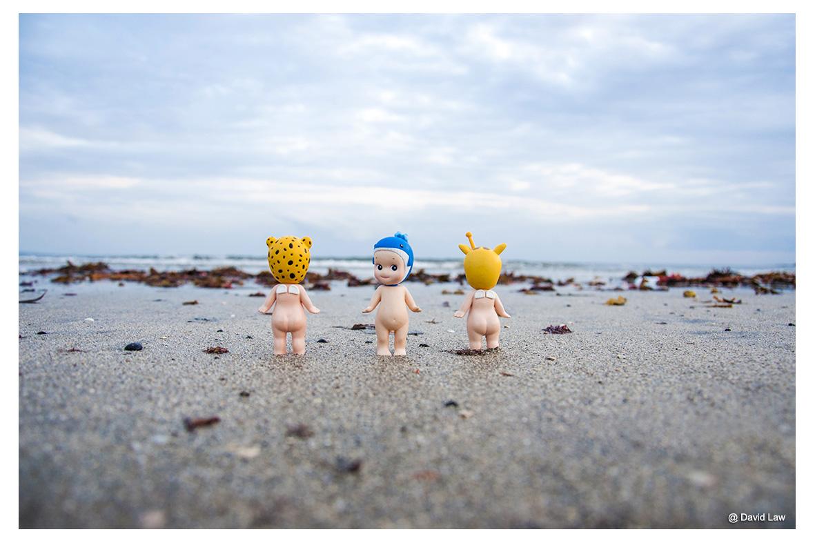 Kamakura Beach lah s0220