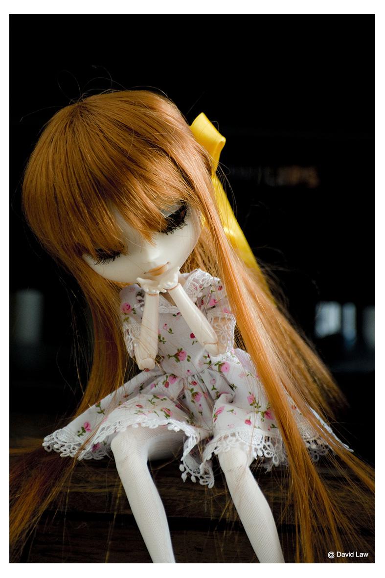 Mizuki ldv s0220