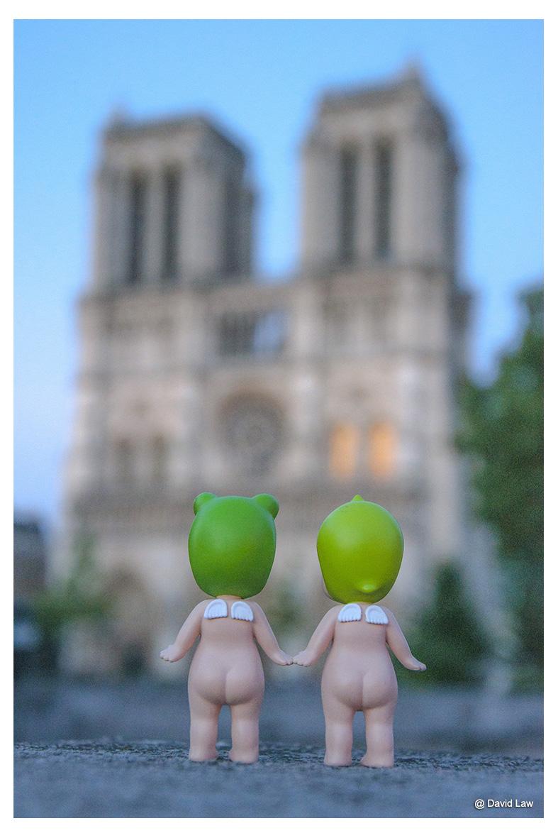 Notre Dame lav s0220