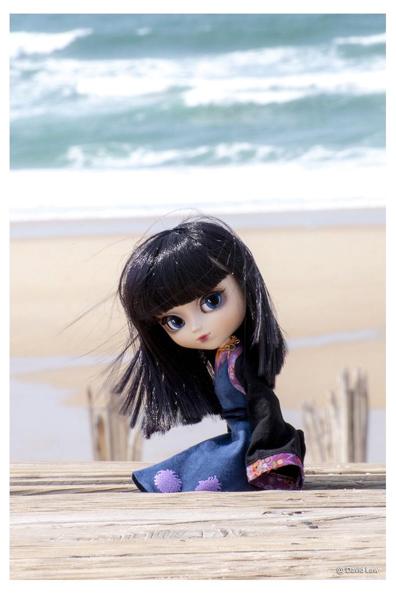 Ocean Side ldv s0220