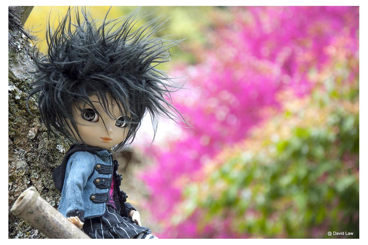Pink Flowers ldh s0220