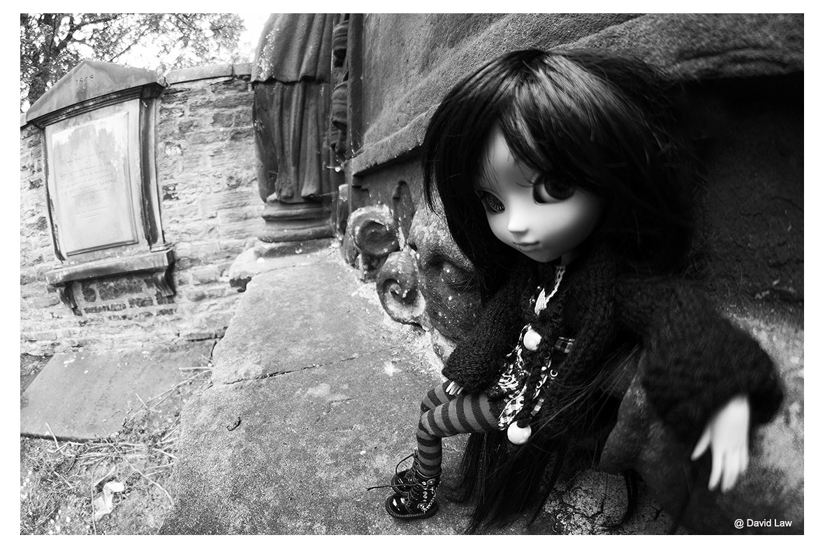 Rock n Doll nb ldh s0220