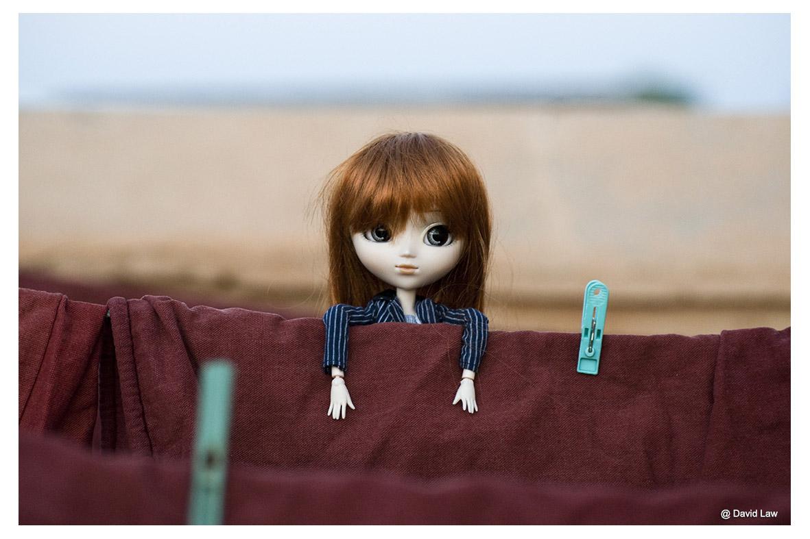 Sayoko V ldh s0220