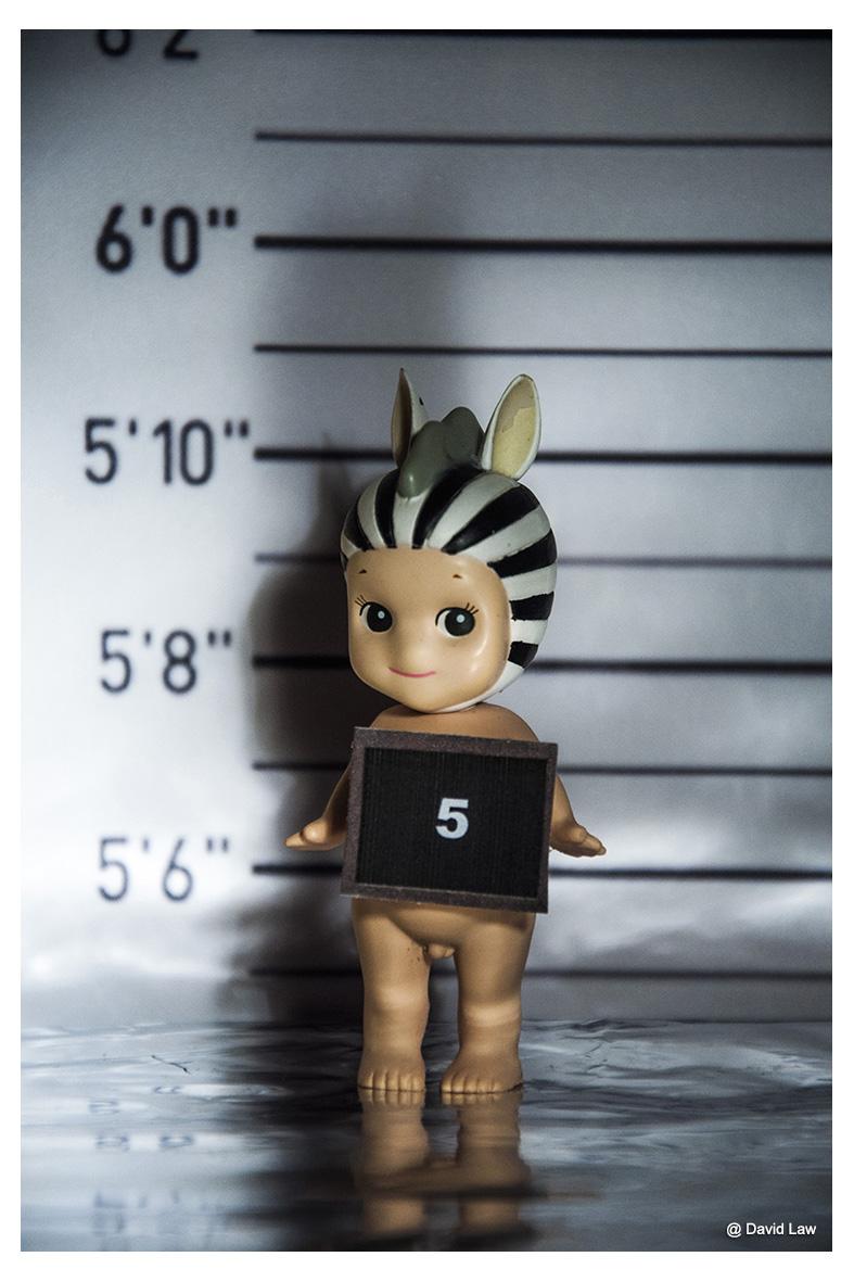 Suspect 5 lav s0220