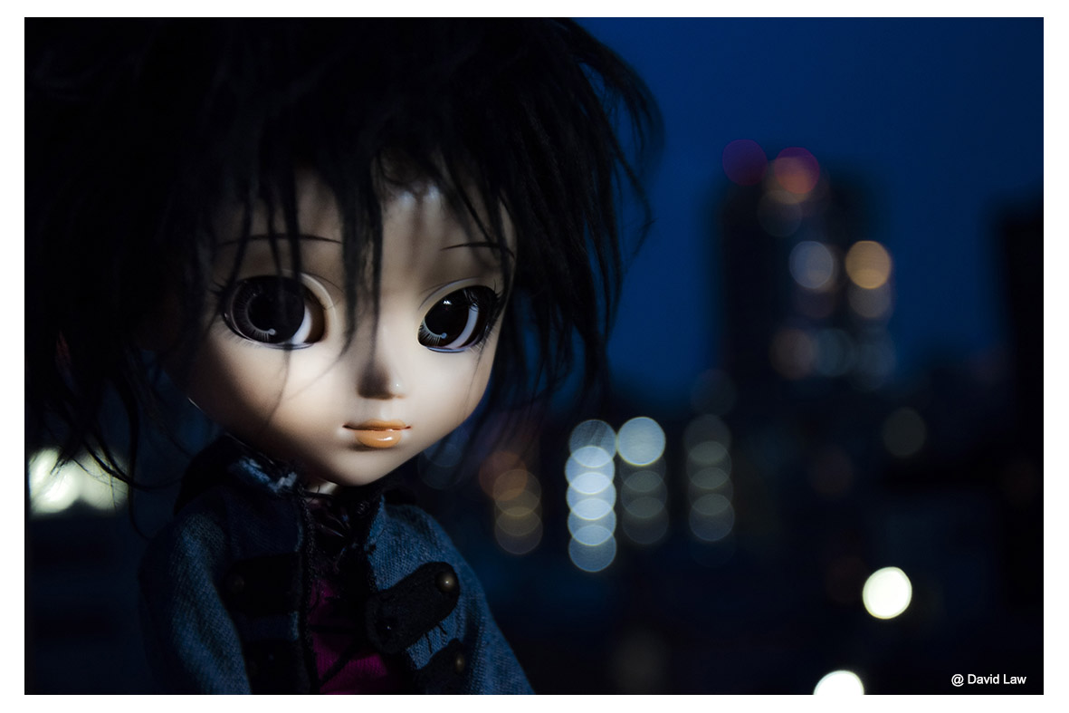 The Roof Doll ldh s0220