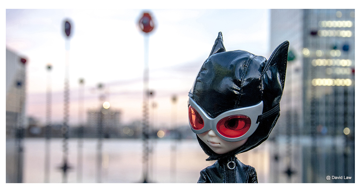 Catwoman Water Mirror 40x80 gitp s0220