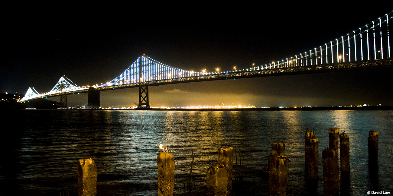 Bridge in San Franciso 40x80 1