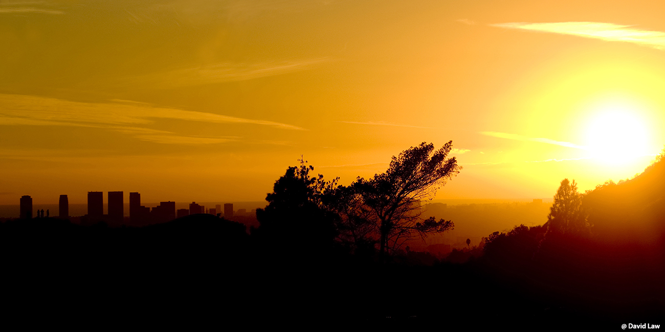 Los Angeles Sunset 40x80 1