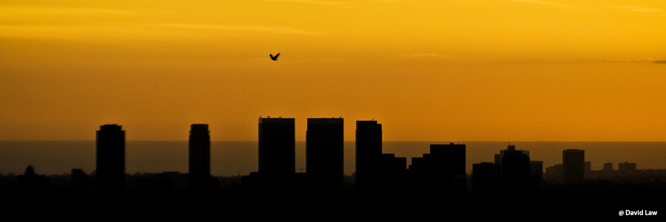Los Angeles Sunset III 30x90 1